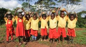 10 000 Potagers en Afrique : Mouvement Slow Food