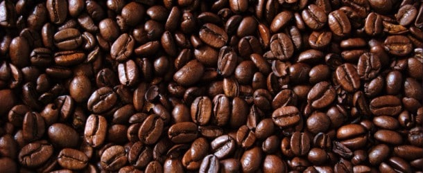 Au Kenya, Vava Coffee brise les codes de la production de café