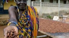 L'Afrique, nouvelle cible commerciale des entreprises « BOP »