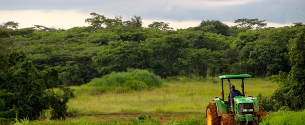 Philippe de Moerloose : « La réussite et le développement de l'agriculture africaine passent par la mécanisation »