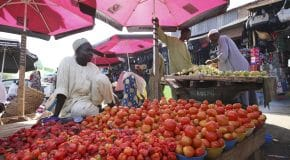 Une première usine de transformation alimentaire Dangote au Nigeria