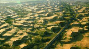 Un mur végétal pour redonner vie au Sahel