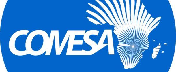 Adhésion au COMESA : la Tunisie intensifie sa politique africaine